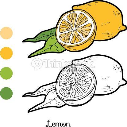Libro Para Colorear Frutas Y Verduras Limón Arte vectorial | Thinkstock