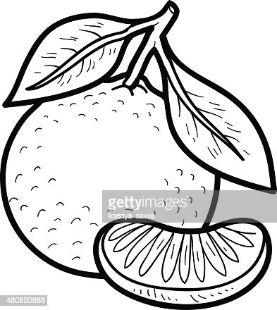 Coloring Book Fruits And Vegetables Vector Art