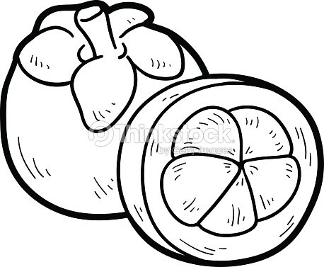 Coloring Book Fruits And Vegetables Mangosteen Vector Art