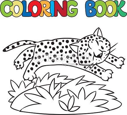 Libro Para Colorear De Poco Cheetah O Jaguar Arte vectorial | Thinkstock