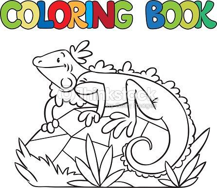 Libro Para Colorear De Poco Iguana Arte vectorial | Thinkstock