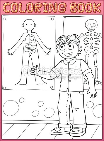 coloring book page schoolboy show structure of the human body vector art - Human Body Coloring Book