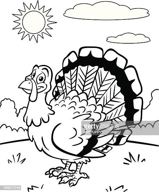 Coloring Book Turkey