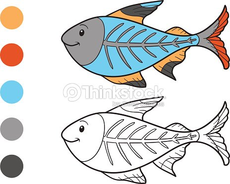 Coloring Book X Ray Fish Vector Art