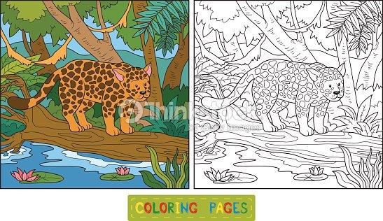Libro Para Colorear Arte vectorial | Thinkstock