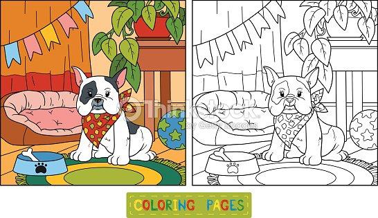 Libro Da Colorare Bulldog Francese E Sfondo Arte Vettoriale Thinkstock