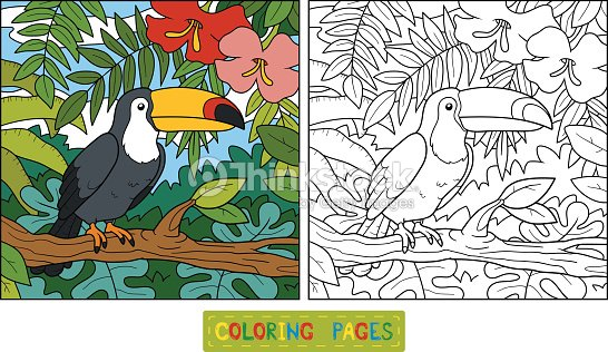 Coloring Book Page Of A Lion