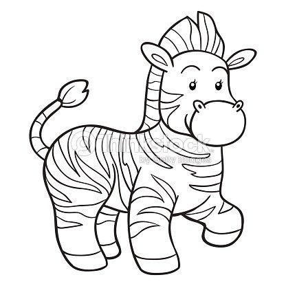 Snap Joven cebra Dibujalia Dibujos para colorear Animales Salvajes ...