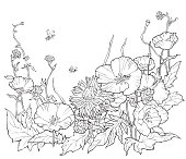Coloring book with hand drawn flowers. Black and white summer illustration.