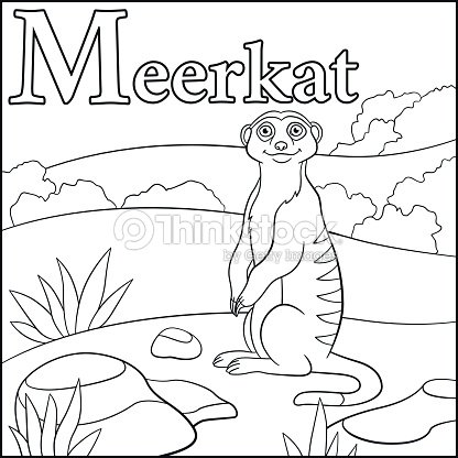 Coloring Page Cartoon Animals Alphabet M Is For Meerkat