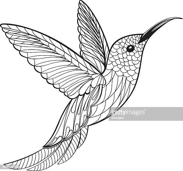 Illustrations et dessins animés de Colibri | Getty Images |Hummingbird Nest Coloring Page