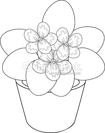 Coloring Page With African Violet Flower In Pot Vector Art