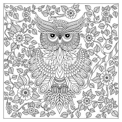 Página Para Colorear Con Búho Y Lindo Marco Flores Arte vectorial ...