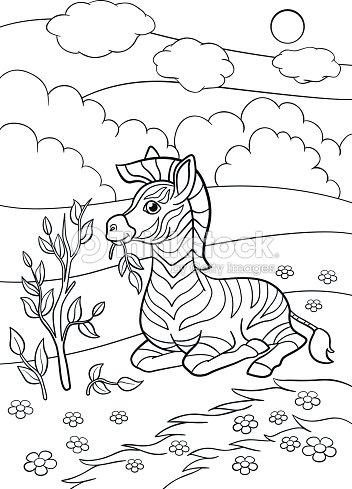 Dibujos Para Colorear Cebra De Lindo Bebé Poco Se Encuentra Y Come ...