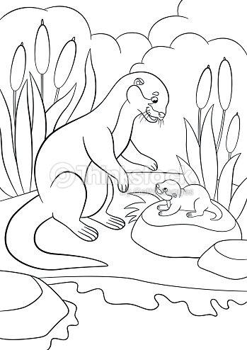 Dibujos Para Colorear Nutria Madre Mira Su Lindo Bebé Arte vectorial ...
