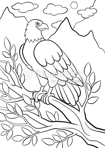 coloring pages wild birds cute eagle sits on the tree branch and