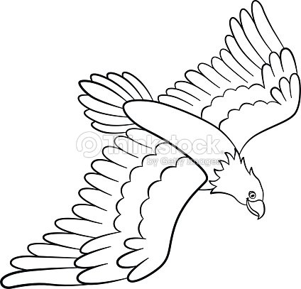 Flying eagle coloring pages