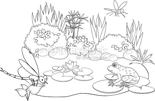 Coloring Pond Vector Art