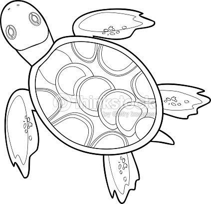 Da Colorare Con Le Tartarughe Marine Arte Vettoriale Thinkstock
