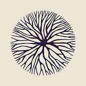 Abstract circle shape illustration of tree branches or roots for concept design, creative nature art. EPS10 vector.