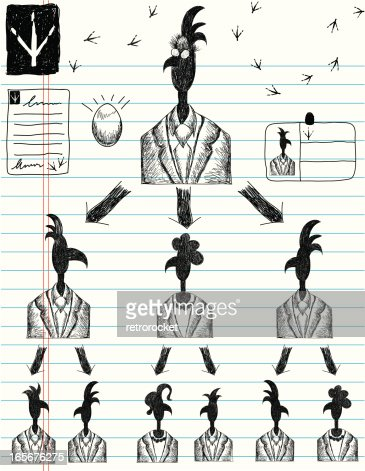 Pecking order theory essay