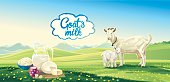 Country landscape with goat and kid. Set dairy product. Vector illustration.