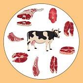 Set of beef meat. Vector illustration