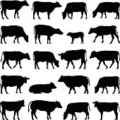 Cow, bull, calf silhouette illustration