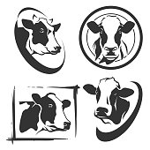 Cow head labels set in vector
