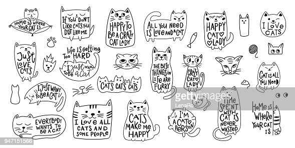Crazy love cat lady shirt quote lettering : stock vector