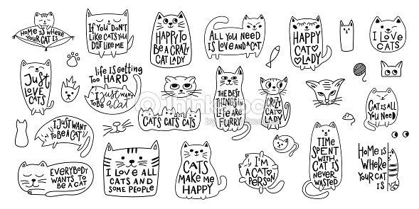 Chemise de femme chat amour fou citation lettrage : clipart vectoriel