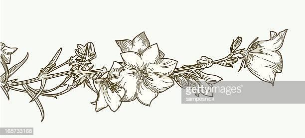 Clématite fleurs et vignes serpolet