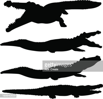 Crocodile And Alligator Silhouette Set Vector Art | Getty ...