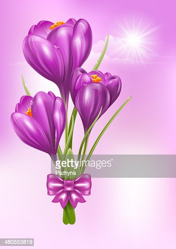 Crocuses : Vector Art