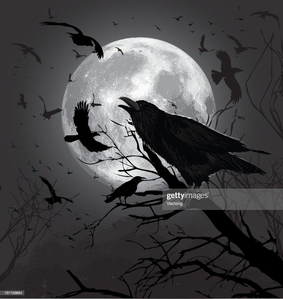 Crows : Vector Art