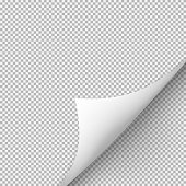 Curled corner of paper with shadow on transparent background. Graphic concept for your design