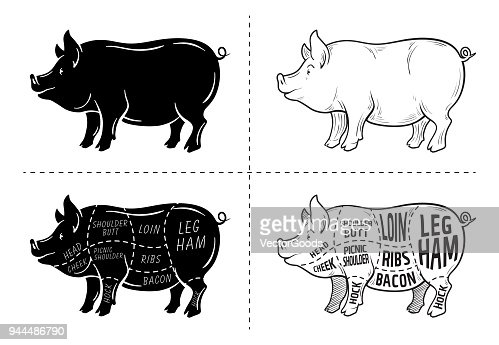 Cut Of Meat Set Poster Butcher Diagram Scheme And Guide Pork Vintage