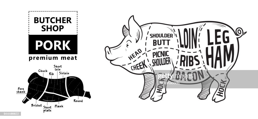cut of meat set poster butcher diagram scheme and guide pork vintage vector id944486822?s\\\\\\\\\\\\\\\\\\\\\\\\\\\\\\\=170667a\\\\\\\\\\\\\\\\\\\\\\\\\\\\\\\&w\\\\\\\\\\\\\\\\\\\\\\\\\\\\\\\=1007 pig teeth diagram wiring diagrams