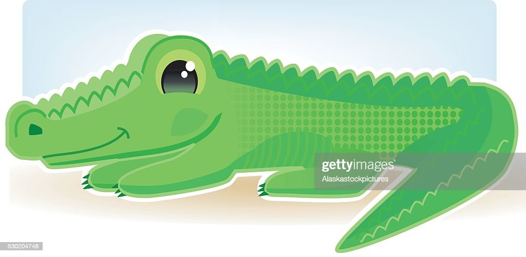 Cute Alligator Vector Art | Getty Images