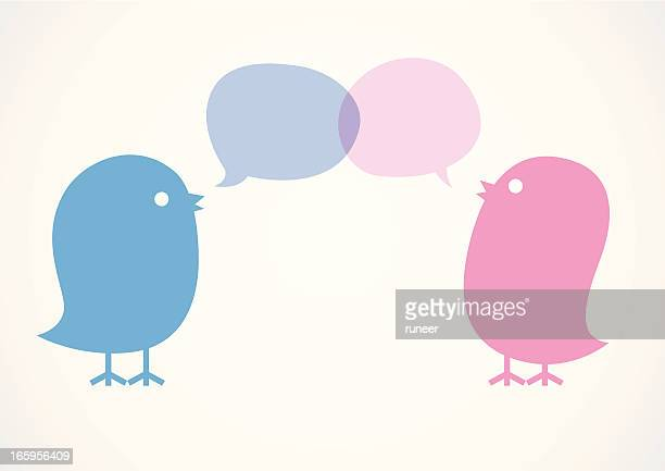 Cute Birds Communicate with Speech Bubbles