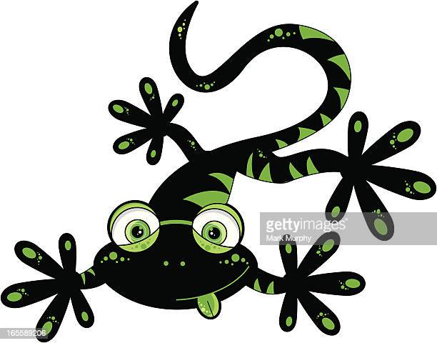 Cute Black & Green Gecko