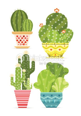 Cute Cactus And Succulent Plants In Pots Stock Vector Thinkstock