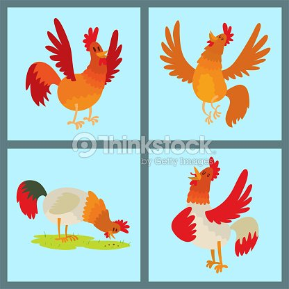 Cute cartoon rooster vector illustration chicken farm animal agriculture domestic bird rooster farm character