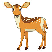 Vector illustration of Cute deer cartoon