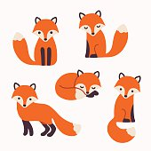 Set of cute cartoon foxes in modern simple flat style. Isolated vector illustration