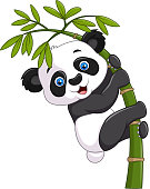 Illustration of Cute funny baby panda hanging on a bamboo tree