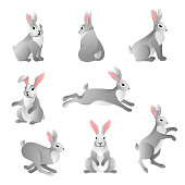 Set of cute grey rabbits in various poses isolated on white background. Hare characters sitting and running. Vector illustration.
