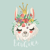 Cute hand drawn llama with flowers wreath and beautiful crown. Flower bouquet, lovely, sketch llama queen kids illustration