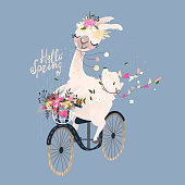 Cute romantic llama, alpaca with floral wreath and hanging flags drive the vintage bicycle with a basket with flowers bouquet. Hello spring lettering