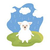 cute sheep adorable character vector illustration design